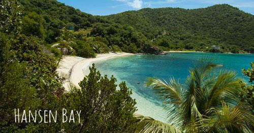 Hansen Bay, Vie's Beach St John snorkeling