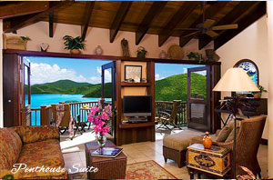 Peter Bay Gatehouse Penthouse Suite great room