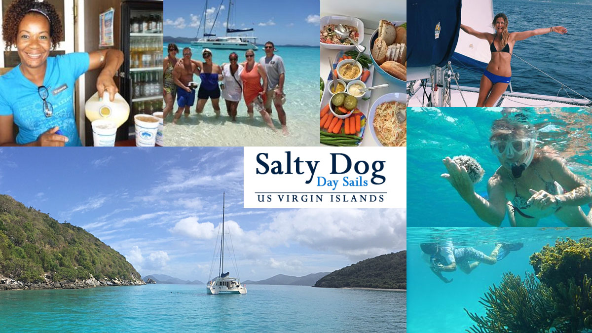 Salty Dog Singing Dog Charters St John USVI