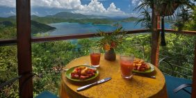 Teahouse Treehouse St John vacation rental
