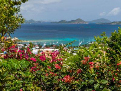 Papaya Suite at Sunset Serenade St John vacation rental
